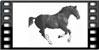 Film frame icon with running horse