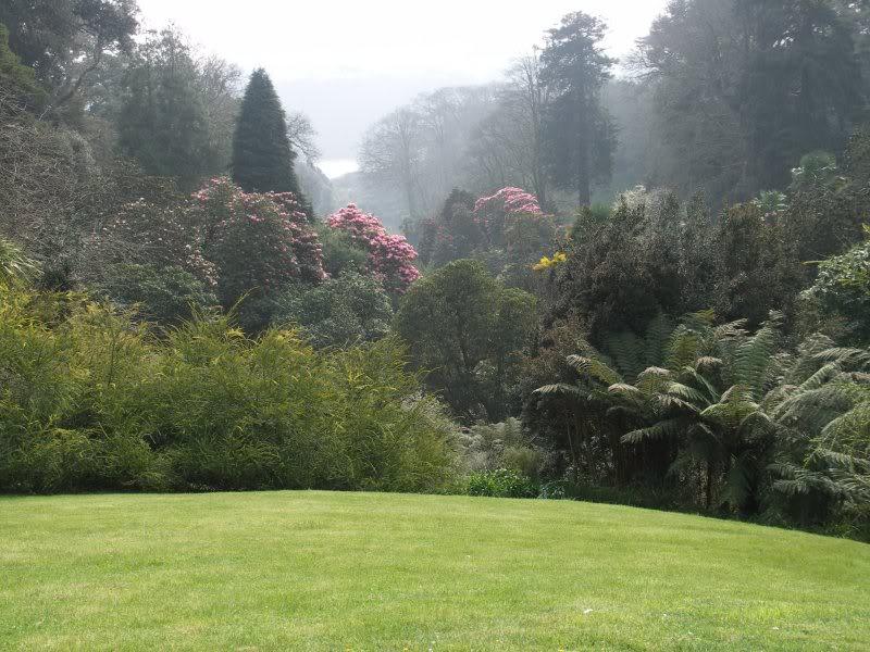Picture of Trebah Garden