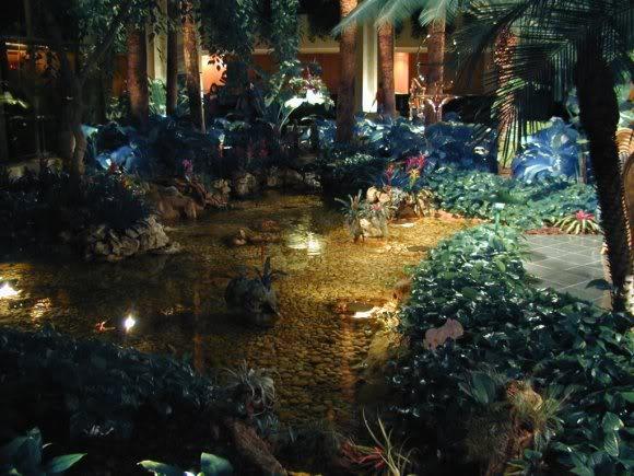 Picture of pond in the hotel atrium