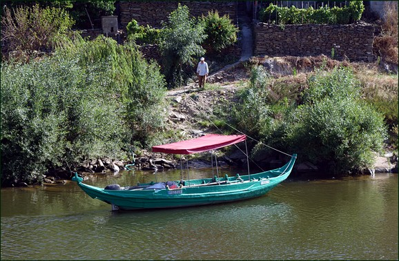 traditional boat moored on river